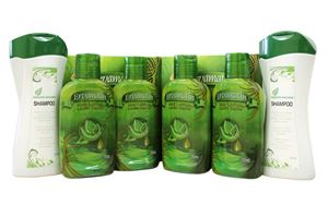 Picture of 4 Bottle's Ervamatin™ Hair Growth Lotion & FREE 2 Organic Shampoo